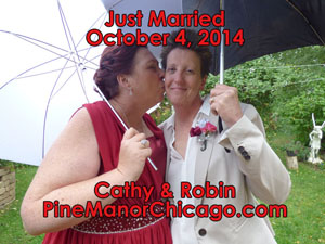 gay marriage illinois, gay wedding chicago site