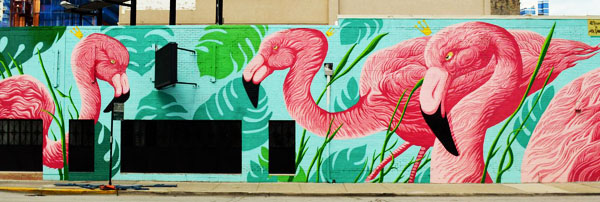 cuba-flamingo-rum-club